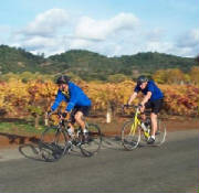 Bicyclists in Sonoma Wine Country