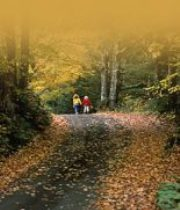 Cottage living means walking autumn trails